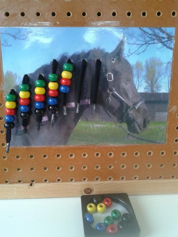 Rijg de manen van het paard
